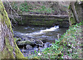 SE6795 : Weir on the River Dove by Pauline E