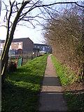 TM3876 : Swan Lane footpath to Bigod Close by Adrian Cable