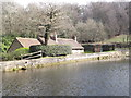 SU8537 : Mill Pond Dam, Barford by Colin Smith