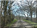 SX3956 : Bridge over abandoned railway near Greeps by David Smith