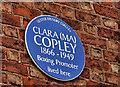 """J3373 : """"Ma"""" Copley plaque, Belfast by Albert Bridge"""