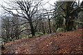 SD6527 : Path on the side of Billinge Hill by Bill Boaden