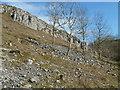 SK1373 : Limestone hillside by Andrew Hill