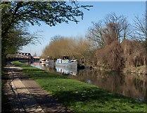 TQ2282 : Grand Union Canal by Derek Harper