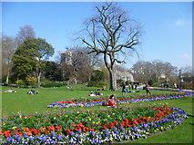 TQ2879 : The Rose Garden, Hyde Park by Marathon
