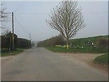 SO6892 : Lane at Bridgwalton by Peter Whatley