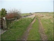 SE0021 : Hebden Royd Bridleway 126 at Round Hill by Humphrey Bolton