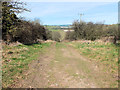 SU0623 : Top of Croucheston Drove by Jonathan Kington