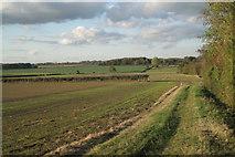 SP4476 : Fields northwest of Church Lawford by Robin Stott