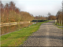 SD6100 : Leeds and Liverpool Canal by David Dixon