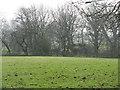 SJ6083 : Farm work near Dennow Wood by M J Richardson