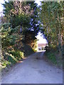 TM3258 : Mill Lane, Marlesford by Adrian Cable