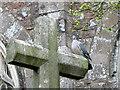 SS9904 : Churchyard Cross, Bradninch by Maigheach-gheal