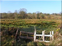H2219 : Killycrin Townland by Kenneth  Allen