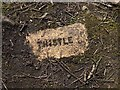 NY7765 : 'Thistle' brick, former waggonway near Barcombe Colliery by Andrew Curtis