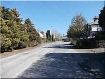 SE2040 : St John's Drive - New Road by Betty Longbottom