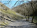 SK1865 : Lathkill Dale footpath by Andrew Hill