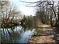 SU8954 : Towpath on the Basingstoke Canal by Christine Johnstone