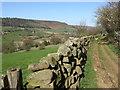SE6893 : Farndale near Ewecote Farm by T  Eyre
