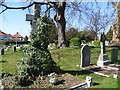 TQ1373 : Angel struggling through ivy in Twickenham Cemetery by Marathon