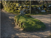 SX7379 : Jay's Grave by Alan Hunt