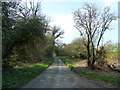 TL0517 : Millfield Lane looking in direction of Millfield Farm by Rob Farrow