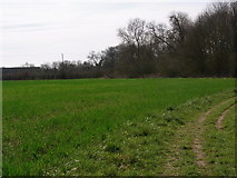 SP0858 : Along the riverside towards Alcester by Liz Stone