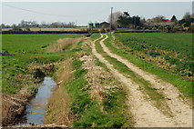 TQ0004 : Track Towards Tortington, Sussex by Peter Trimming