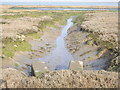 SU7602 : Saltmarsh Channel at Low Tide by Colin Smith