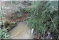 TQ6029 : Tide Brook by N Chadwick