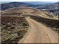 NO4468 : Track Down Ridge by philip blackwood