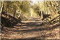 SP7479 : Brampton Valley Way by Richard Croft