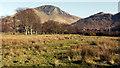 NR9350 : Rough grazing at Lochranza by Trevor Littlewood