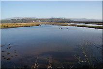 SH5738 : Afon Glaslyn above the Cob by Bill Boaden