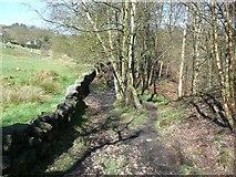 SE0022 : Footpath near Knowl Wood, Cragg Vale, Mytholmroyd by Humphrey Bolton