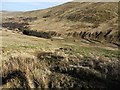 NT9220 : East slope of Cheviot Hill above Langleeford Hope by Andrew Curtis