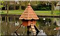 J5081 : Bird box, Bangor by Albert Bridge