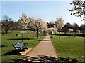 TQ2806 : Cherry Blossom in Hove Park by Paul Gillett