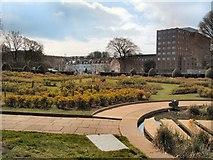 TQ3005 : Scented garden - Preston Park by Paul Gillett