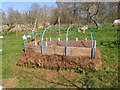NY6128 : Manure-heated bed for seedlings, Acorn Bank by David Hawgood