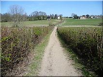 TQ4468 : Path on the Hawkwood Estate by Marathon