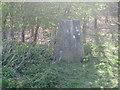 TQ1328 : Ordnance Survey Trig Pillar S5107 by Peter Wood