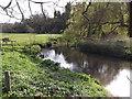 SU9443 : River Wey Below Eashing Bridge by Colin Smith