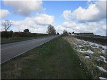 NZ0168 : Walking east towards Halton Shields by Ian S