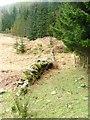 NO0146 : Ruined Wall by Mick Garratt