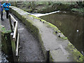 SK3189 : Massive masonry flanking a weir, Wisewood by Robin Stott