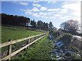 NZ0768 : Walking east towards Harlow Hill by Ian S