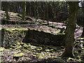 SD6220 : Ruins of Blackhurst Hall by Philip Platt