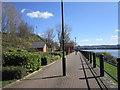 NZ2263 : Walking east along the Tyne by Ian S