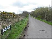 H5559 : Tycanny Road, Garvaghy by Kenneth  Allen